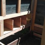 chicken-coop-building-029