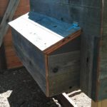 chicken-coop-building-052