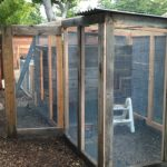 chicken-coop-building-087