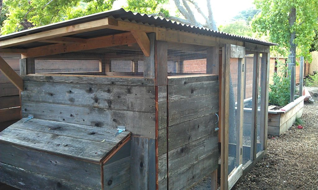 How To Build A Chicken Coop Marin Homestead