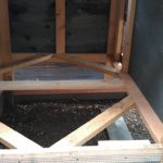 chicken-coop-building-098