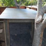chicken-coop-building-107