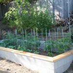 brickgarden230529sm