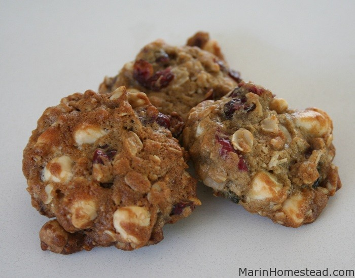Cranberry White Chocolate Oatmeal Cookies (Makes about 6 dozen)