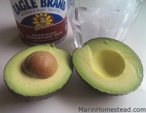 avocado_smoothie_ing_SM