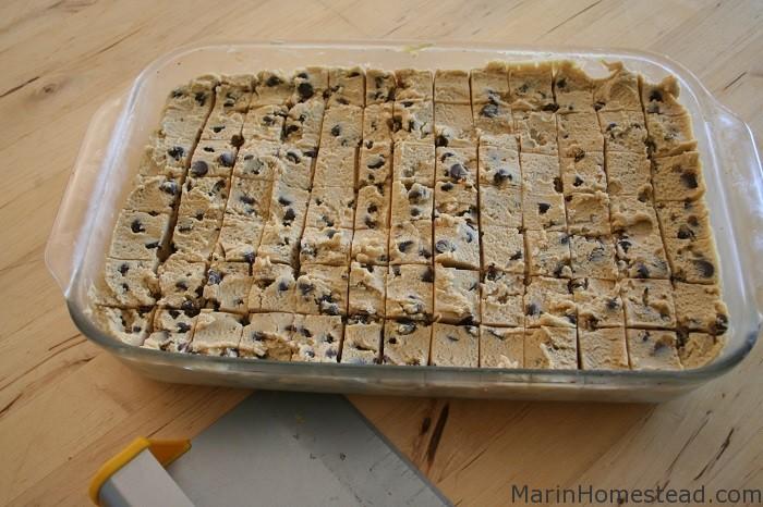 chocolate_chip_cookies_frozen