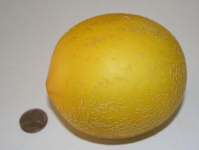Melon Update: 3.5 months
