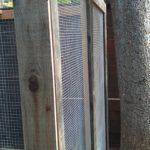 chicken-coop-building-076