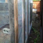 chicken-coop-building-077