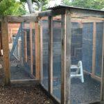 chicken-coop-building-087