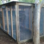 chicken-coop-building-090