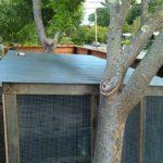 chicken-coop-building-091
