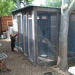 chicken-coop-building-106