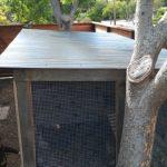 chicken-coop-building-107