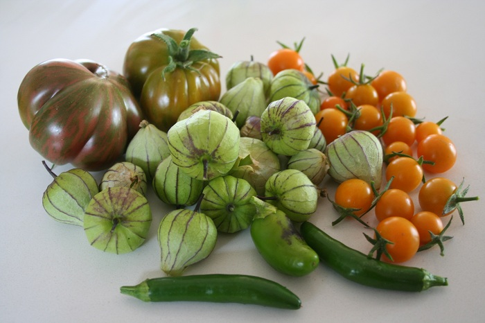 Garden Update: Tomatillos, Serrano Peppers, Jalapeno Peppers, Pink Berkeley Tie Dye Tomato
