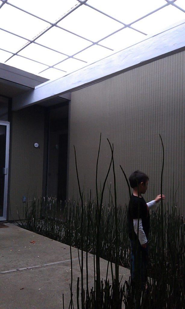 How To Build A Simple Eichler Atrium Cover Marin Homestead