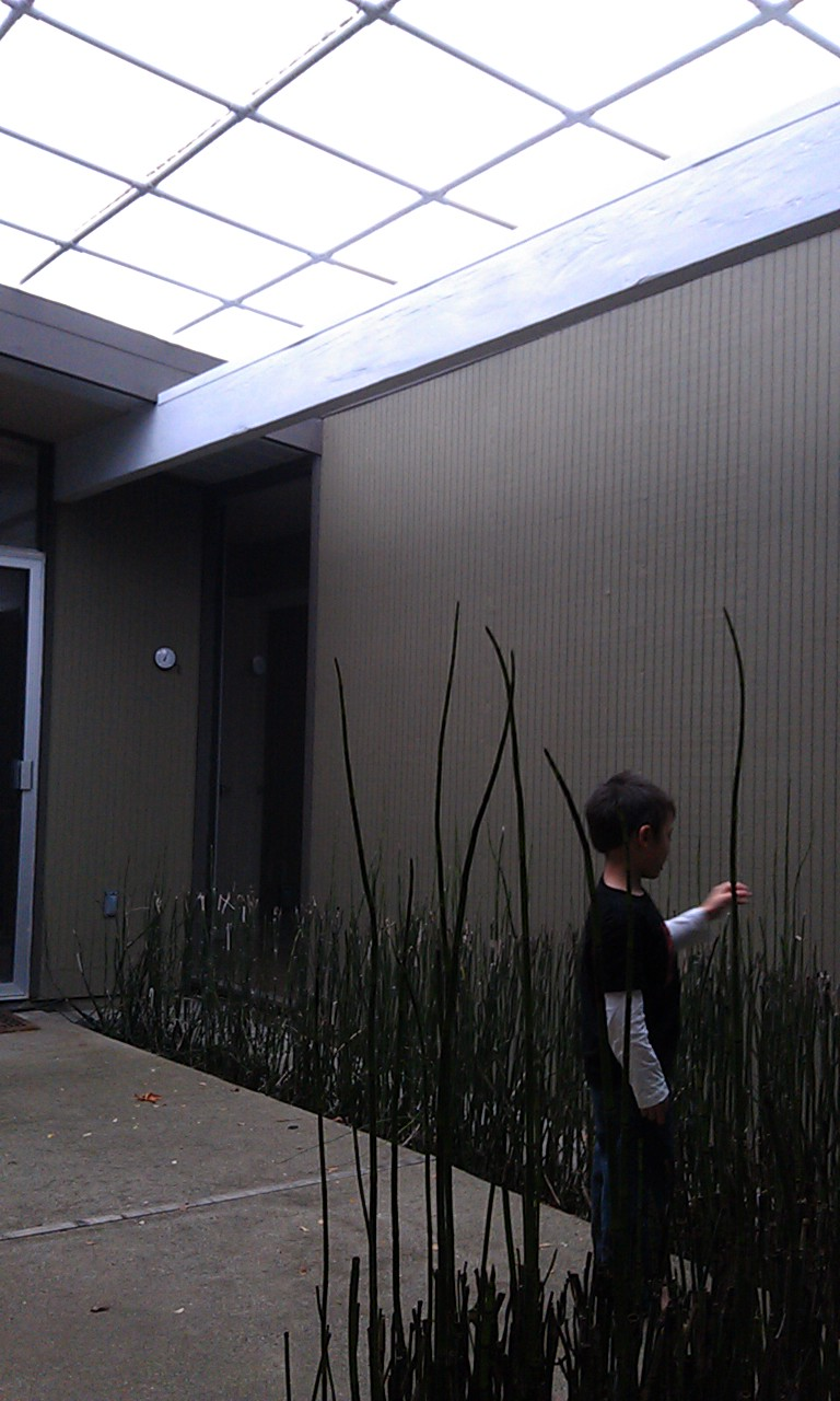 How To Build a Simple Eichler Atrium Cover