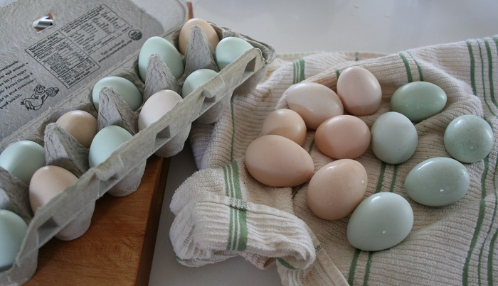 How to Boil Farm Fresh Eggs (Step-by-Step Pictorial)