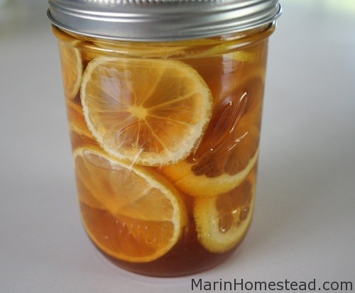 Lemon Ginger and Honey in a Jar (Cold Buster!)