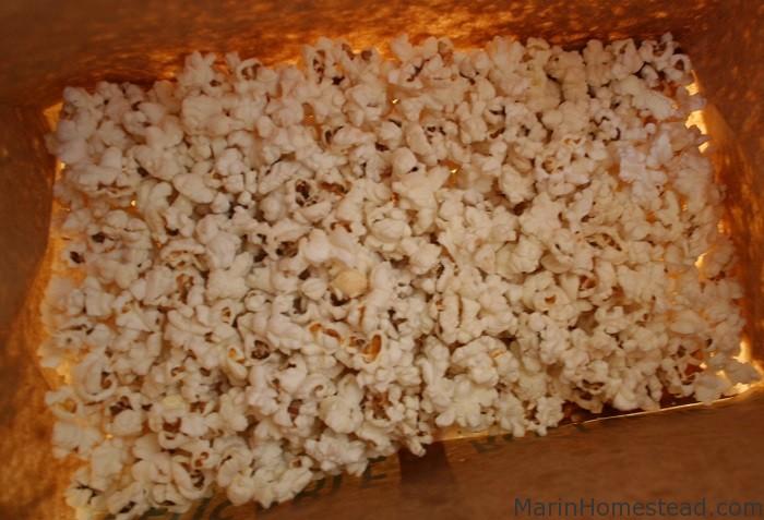 popcorn_microwave_final