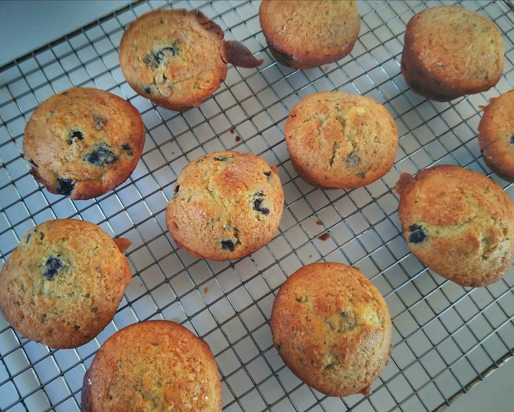 Tammy's Easy Blueberry Muffins